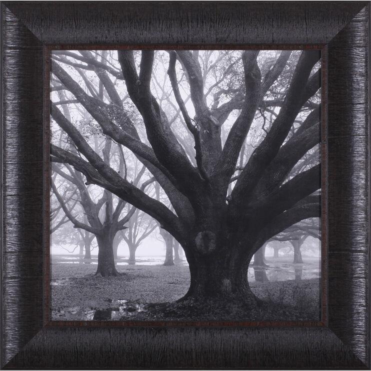 Oak Grove Winter Framed Art