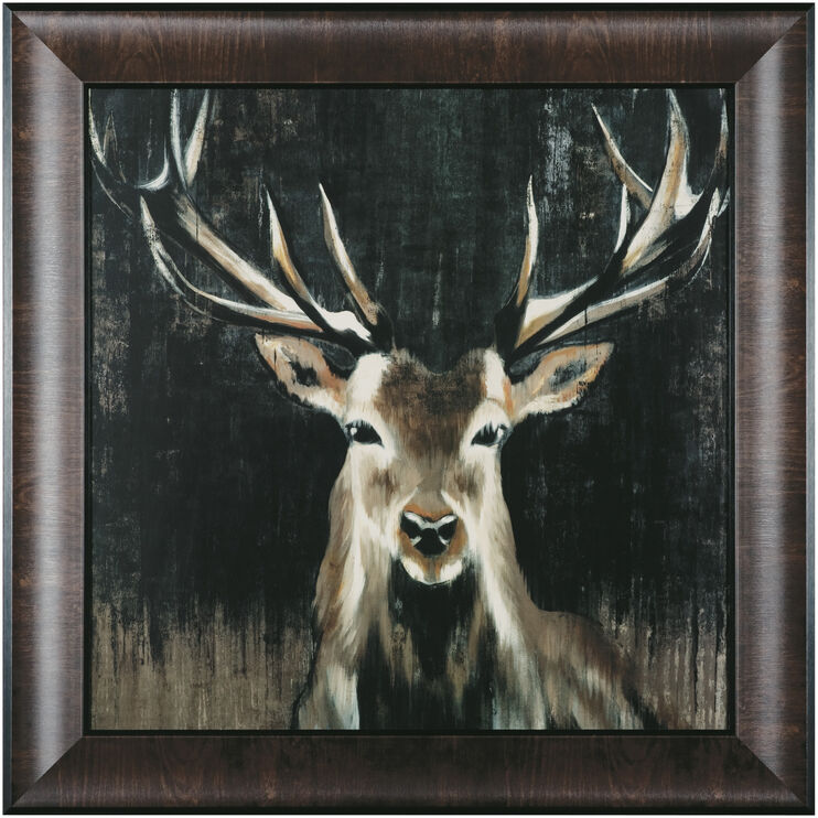 Young Buck Framed Art