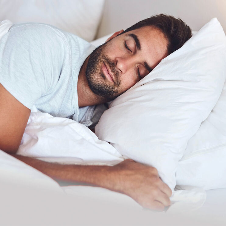 Fabrictech Beige Queen Bamboo Medium Pillow