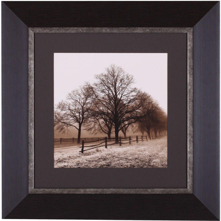 Row of Trees Framed Art