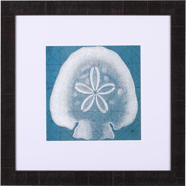 Coastal Menagerie IV Framed Art