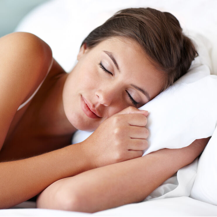 Fabrictech White Queen Microfiber Lite Pillowcase