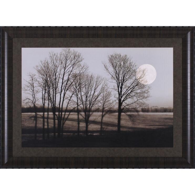 November Moon Framed Art