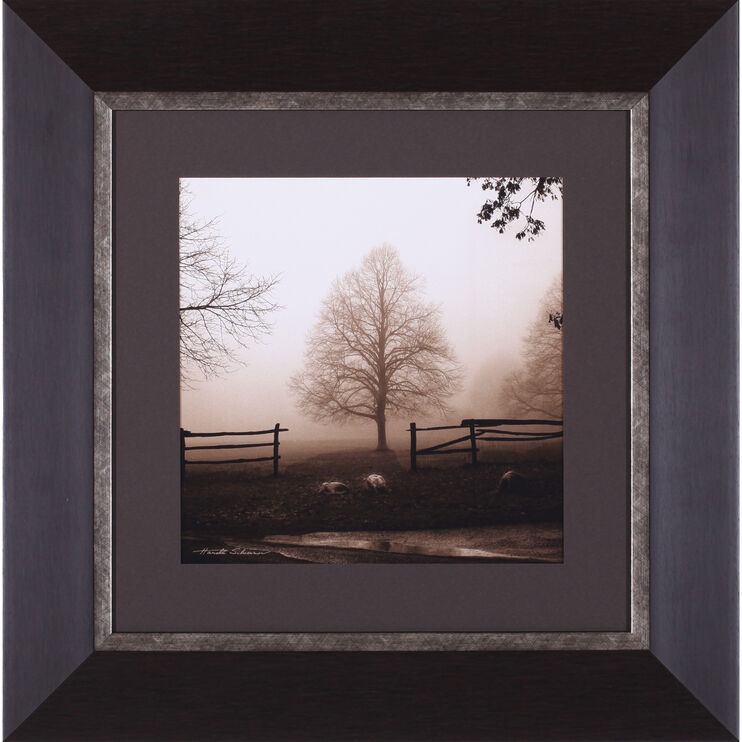Morning Texture Framed Art